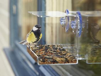 Utenu Vogelhaus fürs Fenster