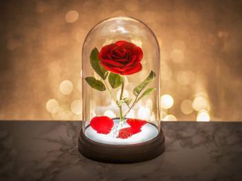 Die Schöne und das Biest Lampe