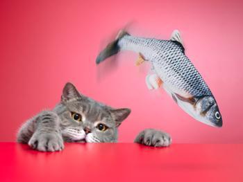Spralla Elektrisches Katzenspielzeug Fisch