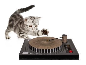 Kratzbrett Plattenspieler Für Katzen
