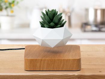 Spralla® Schwebender Blumentopf